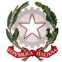 IC 'ILARIA ALPI'  logo